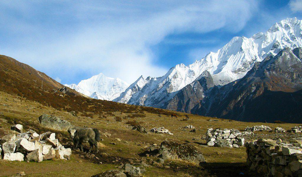 Yala peak (left) 5,520 m /18,110 ft