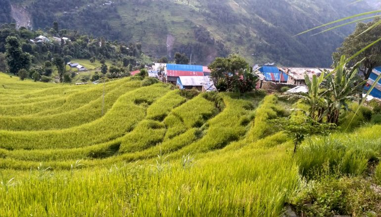 Homestay Treks in Nepal   Go local, support local.